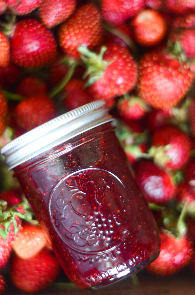 up close aerial view of jar of strawberry jam in a bed of strawberries