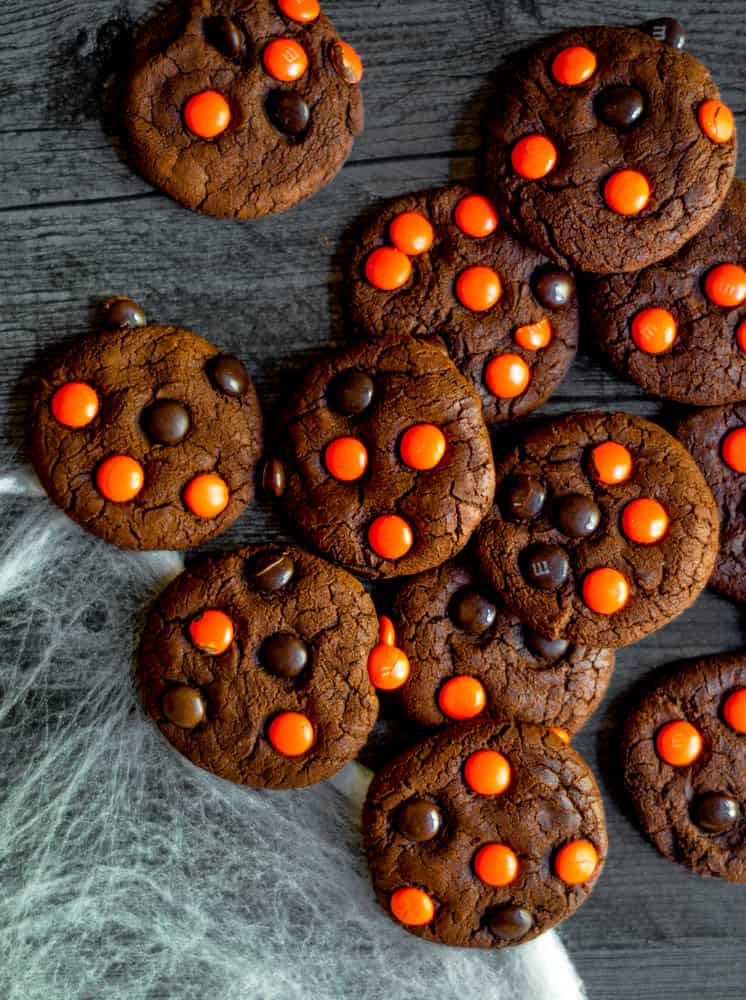 aerial picture of several chocolate cookies on black background with spider web in bottom left-hand corner.